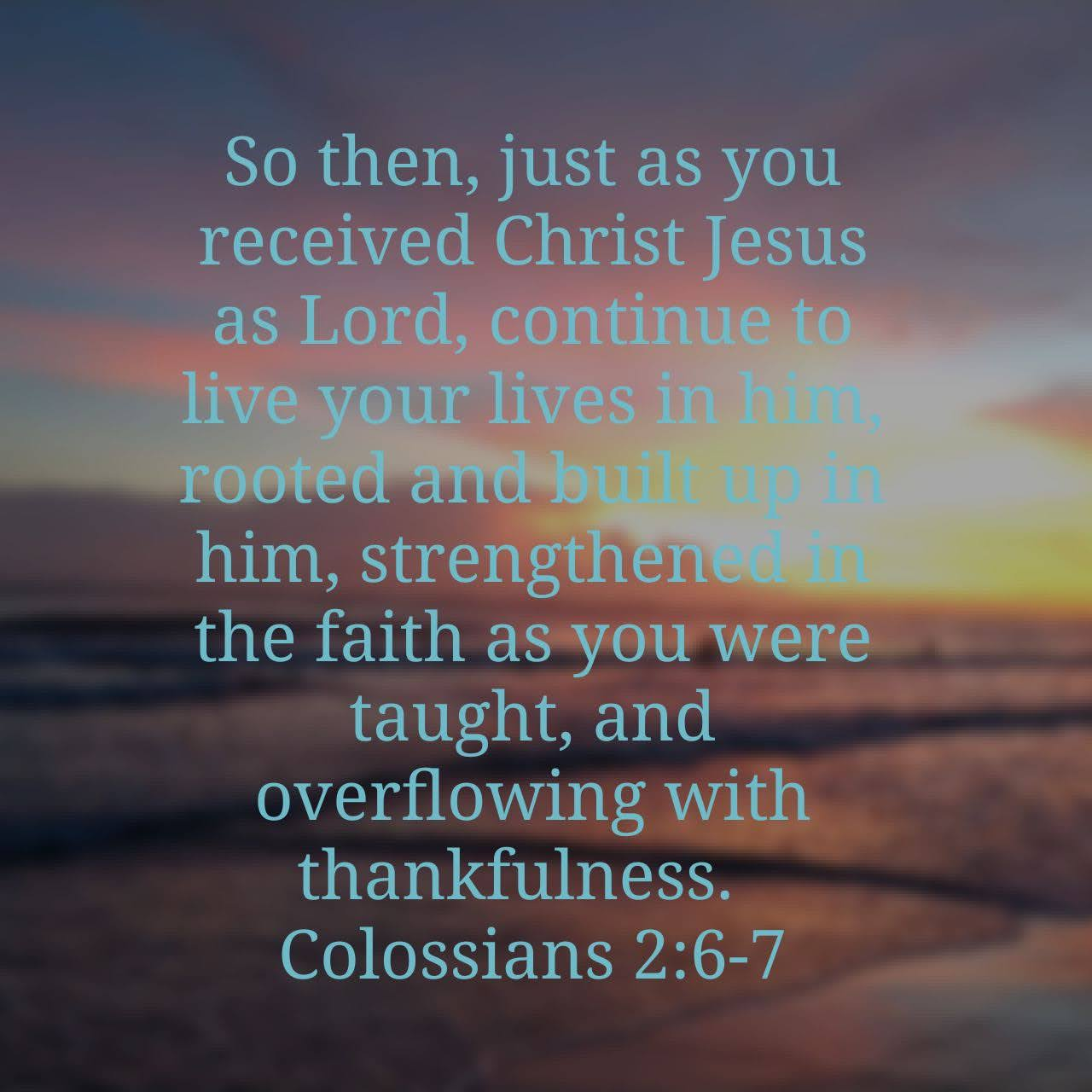 Firmly Rooted In Christ
