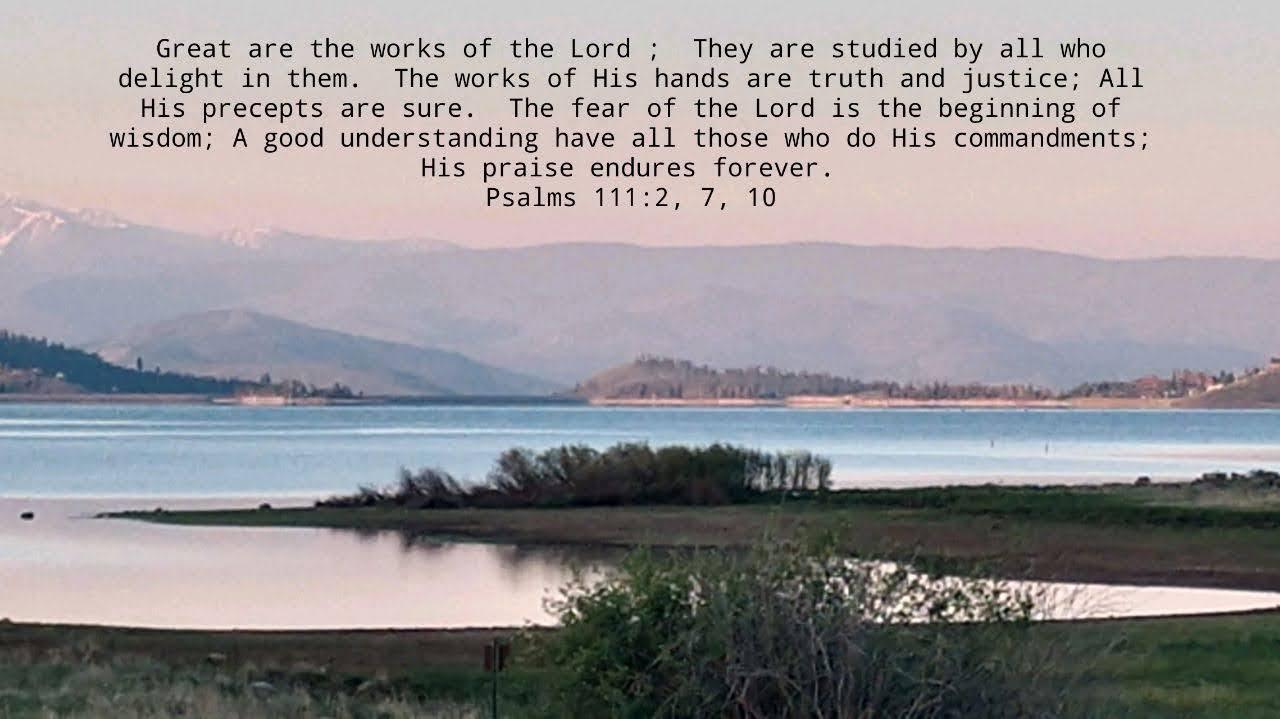 Delighting In God's Works